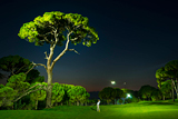Montgomerie Maxx Royal Belek Golf Resort